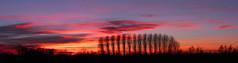 Inizia il nuovo anno (giovanni_novara) Tags: trees winter sunset red sunshine alberi tramonto nuvole pano panoramic campagna panoramica land sole inverno rosso countyside autostich rememberthatmomentlevel4 rememberthatmomentlevel1 rememberthatmomentlevel2 rememberthatmomentlevel3 me2youphotographylevel1 rememberthatmomentlevel5 rememberthatmomentlevel6