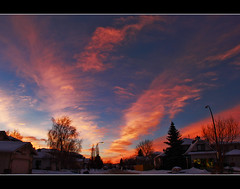 Fire In The Winter Sky (LostMyHeadache: Absolutely Free *) Tags: street trees houses homes winter sunset sky snow cold ice clouds canon fire evening intense twilight streetlight glow suburban silhouettes dramatic atmosphere neighborhood davidsmith calgaryalbertacanada eos60d