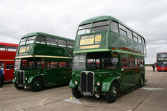 Green Regents at Showbus (DennisDartSLF) Tags: bus duxford greenline parkroyal londontransport aec showbus rt2083 lyf21 rt3254 llu613 regentiii