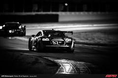 APR-Motorsport-Rolex-24-2013-121