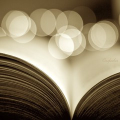 Sepia Book (Book & Bokeh) (Explored) (Caropaulus) Tags: sepia 50mm book bokeh livre