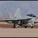 F/A-18F Super Hornet - 166630 / 252 - US Navy