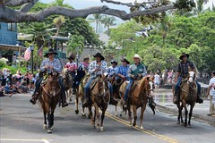 Paniolo young and old (BarryFackler) Tags: horses people holiday men animal animals cowboys palms hawaii polynesia boots outdoor horsemen flags parade celebration sidewalk jeans palmtrees event riding lamppost hawaiian bigisland procession kane equestrian kona saddles equine cowboyhats riders cowboyboots banyantree polynesian kailuakona paniolo strret 2016 reins domesticanimal bridles stirrups hawaiicounty mokuaikauachurch aliidrive hawaiiisland hawaiianculture hawaiianholiday westhawaii northkona hawaiiantradition kingkamehamehadayparade barryfackler barronfackler 100thannualkingkamehamehadayparade