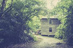 Mingus Mill (LarryHB) Tags: 2016 flow horizontal mill northcarolina old photography rural travel vintage