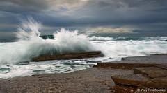 Splash (renatonovi1) Tags: splash wave swell surf ocean sea water storm beach rock seascape landscape avalon sydney australia