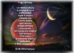 Figlio dellalba (Poetyca) Tags: featured image immagini e poesie sfumature poetiche poesia