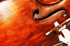 Detalhe Contrabaixo (marcusviniciusdelimaoliveira) Tags: madeira musica contrabaixo base basemusical ressonncia arco