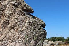 Bizzarri profili - Mont' 'e Cresia (Sinnai) (Franco Serreli) Tags: sardinia sardegna montecresia sinnai rocce roccia pietre profilo