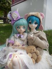 Kashi (@Ushi) & Miku (@Darek) (Ushi de Bray) Tags: jardin des plantes rouen doll anime dollfie dream hatsune miku vocaloid mini tamano mayu