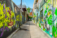 Kensington Graffiti (michaelTO) Tags: 52weeksthe2016edition weekstartingfridayjuly292016 week312016 2016 52 52weeks canada graffiti kensingtonmarket ontario project52 sliderssunday toronto week31theme