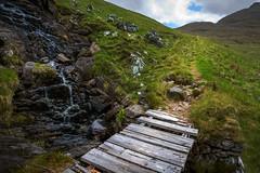 JHF0003913 (janhuesing.com) Tags: rot inverie scotland wildlife hiking highlands mallaig knoydart landscape nature outdoor