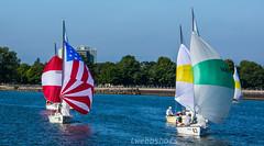 August19Sailboats3-7224 (lwebbshots) Tags: lakeontario geneseeriver rochesterny portofrochester sailing