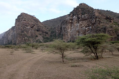 PWS02119 (paulshaffner) Tags: dorobo safaris dorobosafaris sanjan gorge tanzania safari education abroad studyabroad penn state pennstate biology pennstatebiology