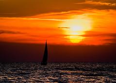 DSC_5930 (briansterken) Tags: sunset sea seaside outdoor shore landscape serene sky ocean lake lakemichigan michigan puremichigan beach boat vehicle dusk water sailboat