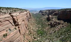 A Canyon Within A Canyon (Jayhawk Explorer) Tags: ipiccy canyon redcanyon canyonwithinacanyon rimrockdrive overlook redcanyonoverlook scenic rocks coloradonationalmonument colorado grandjunction roadtrip nationalmonument nationalparkservice geology grandmesa mtgarfield bookcliffs