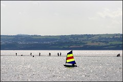 West Kirby Wirral  230816 (25) (over 4 million views thank you) Tags: westkirby wirral lizcallan lizcallanphotography sea seaside beach sand sandy boats water islands people ben bordercollie dog beaches reflections canoes rocks causeway yachts outside landscape seascape