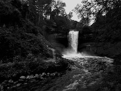 Minehaha Falls (Rupam Das) Tags: falls water nature natural monochrome outdoor flowing park minehaha statepark trees
