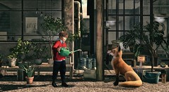 Great opportunities to help others seldom come, but small ones surround us every day. (Skippy Beresford) Tags: boy childhood littleprince fox friend help opportunity garden plants light love
