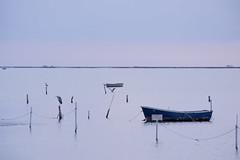 Sunrise in Delta de l'Ebre (Sant Carles de la Rpita) (agustiam) Tags: delta deltadelebre santcarlesdelarpita sea bird boat sunrise