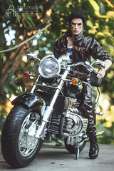 Maximilian (astramaore) Tags: 16 astramaore bike motorbike motorcycle honda valkyrie lukas rock ringmaster brunet cheekbones blueeyes thickbrows leather black summer asphalt dollphotography doll toy integritytoys collectible maverick handsome male model