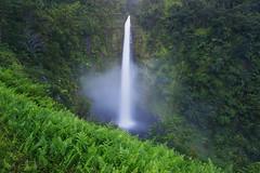 Jurrasic Falls (terenceleezy) Tags: kalapanaoceanentry pahoa hi hawaii iphone7 iphone7plus h2s hydrogensulfide oceanentry moltenlava volcano kilauea 61g oceanlavaentry jurrasicfalls akakafalls