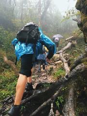 IMG_9139 (Seif Sallam) Tags: travel vietnam sapa fansipan hiking trekking