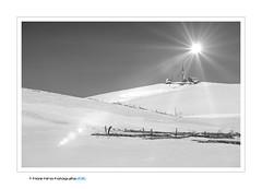 Lessinia (Fiore Nino) Tags: lessinia montagna bianca neve freddo sole luce verona italia bw controluce italy