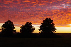 September Sunset [1] (Rynglieder) Tags: england westmidlands stourbridge sunset sky tree