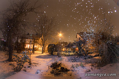 Snow (aumangea) Tags: christmas schnee winter light snow weihnachten licht advent fisheye