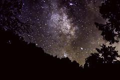 (JuliaBrokaw) Tags: california longexposure sky night stars astrophotography astronomy constellation threerivers
