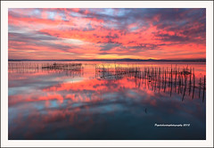 """Glorious sunset at L'Albufera Natural Park II"" (Pepelahuerta) Tags: raw lagos atardeceres lakers reflejos laalbufera leefilters canon5dmarkii ultraangulares pepelahuerta canon1740ef valenciaparquenatural"