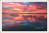 """Glorious sunset at L'Albufera Natural Park II"" (Pepelahuerta) Tags: raw lagos atardeceres lakers reflejos laalbufera leefilters canon5dmarkii ultraangulares pepelahuerta canon1740ef valenciaparquenatural"