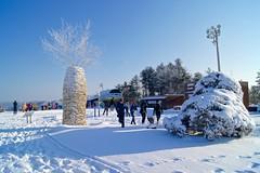 Winter wonderland at Hyundai Sungwoo Resort, South Korea (UweBKK (α 77 on )) Tags: mountain snow ski ice sport sony south korea resort alpha dslr hyundai 550 winterbeauty wonju gangwon sungwoo flickraward