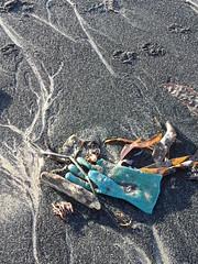 Coal glove (Nekoglyph) Tags: orange black seaweed green abandoned beach lost sand rubbish dumped gove coatham seacoal