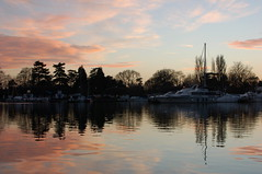Oulton Broad reflections after sunset (Kirkleyjohn) Tags: pink trees sunset reflection silhouette reflections boats atardecer treesilhouette suffolk sonnenuntergang prdosol pines coucherdusoleil oultonbroad