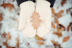 Winter (L e t i) Tags: winter white snow 50mm nikon inverno castello tortona d700