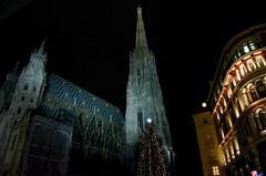 Stephansdomi jõulupuu (anuwintschalek) Tags: vienna wien christmas night weihnachten austria evening abend advent nacht dom decoration christmastree christmaslights dome stephansdom weihnachtsbaum lichter steffl viin õhtu jõulud toomkirik 18200vr d7k vorweihnachtlich kaunistused jõulukuusk jõulupuu tulukesed nikond7000 kaunistatud jõulueelne