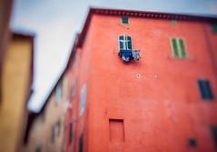 Laundry (miemo) Tags: city travel windows italy building wall facade spring europe italia olympus laundry tuscany siena toscana ep1 tiltshift