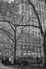 Financial district (blinkd.ca) Tags: park newyork streetphotography timessquare usps statueofliberty wallstreet starsandstripes