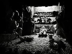 Merry Christmas (Yves Roy) Tags: xmas interestingness interesting fav20 explore feliznatal merrychristmas yr feliznavidad fav10 christisborn melekalikimaka godjul joyeuxnoël hyvääjoulua glædeligjul kalachristouyenna nollaigshonadhuit sungtanchukha gesëendekersfees fröhlicheweihnachten explored christmascrib blackwhitephotos christmaschild prejemevamveselevanoceastastnynovyrok gajankristnaskon gledilegjol shinnenomedetokurisumasuomedeto wesolychswiatbozegonarodzenia chucmunggiangsinh natalehilare badadinmubarakho yvesroy yrphotography srozhdestovmkristovim buonnataleorbuonefestenatalizie suksunwanchristmas