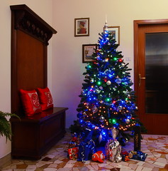 My Xmas tree - Il mio albero di Natale (SissiPrincess) Tags: decorations home casa christmastree merrychristmas alberodinatale buonnatale addobbi mygearandme blinkagain