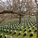 Arlington National Cemetery_6