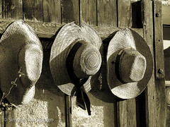 "Row of three hats • <a style=""font-size:0.8em;"" href=""http://www.flickr.com/photos/44019124@N04/8310995442/"" target=""_blank"">View on Flickr</a>"