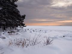 Winter seascape (blaahhi) Tags: winter sea snow seascape ice suomi landscape helsinki balticsea shore lauttasaari uusimaa panasoniclumixgh3 panasonicgxvario1235f28