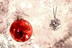 I had a Happy Christmas ! (FotoLind) Tags: christmas red white selfportrait reflection iceland christmastree christmaslights linda christmasornament discoball ísland jól rautt jólatré speglun fotolinda jólaljós rauður jólaskraut rauð jólakúla jólakúlur fotolind lindaólafsdóttir