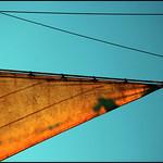 Sole Sail