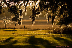 The Golden Moment, Sunset, North Florida (kmalone98) Tags: sunset yard farms photographylight countrylandscapes goldenhourphotography