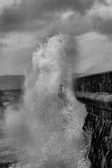 Mother Nature (Robert D Thomas) Tags: uk sea horses white water wales rocks europe waves break power tide north wave crashing breakwater splashing anglesey holyhead