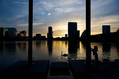 City Silhouette (DavioTheOne) Tags: city sunset sky people sun animals clouds orlando swan downtown child fl rays sunrays silhoutte