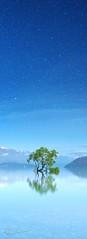 Singled Out (Tim Poulton) Tags: newzealand lake stars nikon panoramic lakewanaka schneider d800 timothypoulton schneiderpctssuperangulon50mm